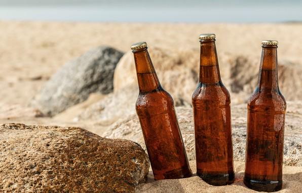 Picture sand, sea, beach, the sun, stones, beer, bottle, wet, bokeh, closeup
