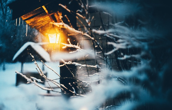 Picture winter, light, snow, branches, nature, house, lantern