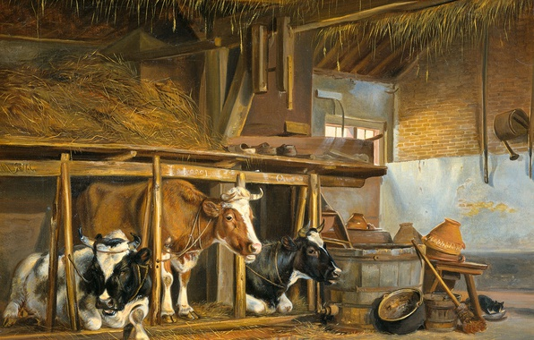 Picture animals, oil, picture, canvas, Jan van Ravenswaay, Cows in the Barn