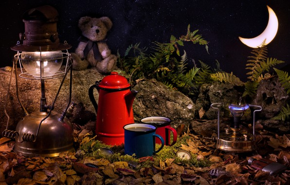 Picture leaves, stones, toy, watch, lamp, a month, bear, mugs, fern, burner
