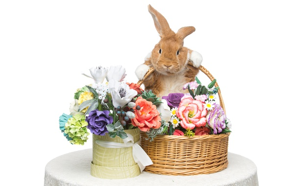 Picture flowers, basket, rabbit, Easter, happy, rabbit, flowers, spring, Easter, eggs, bunny, decoration