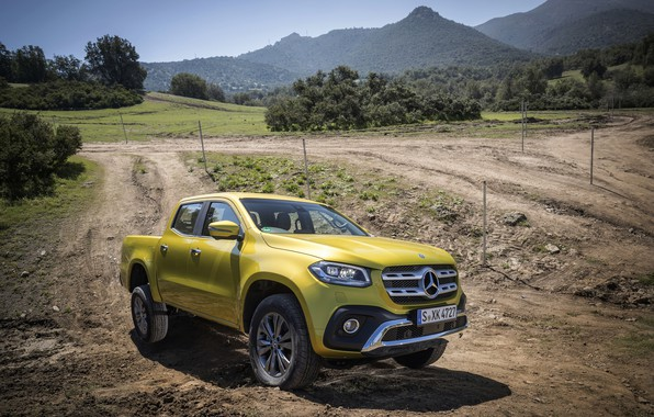 Picture yellow, earth, vegetation, Mercedes-Benz, pickup, primer, 2017, X-Class