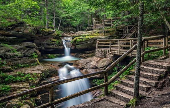 Picture Waterfall, Beauty, Perilla