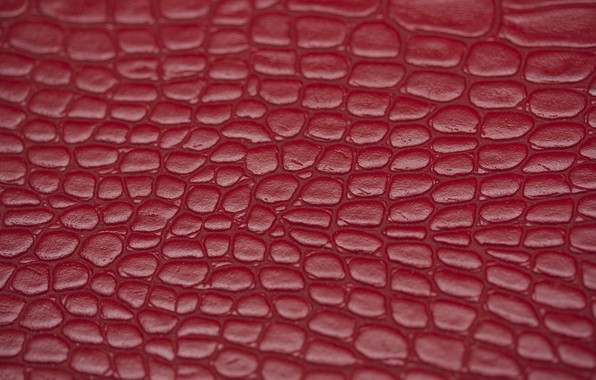 Picture macro, texture, leather
