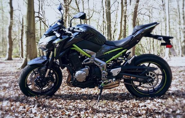 Photo Wallpaper Motorcycle Kawasaki Moto Kawa Z900