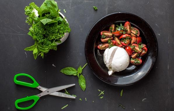 Picture food, tomatoes, mint, parsley, scissors, salad, arugula, mozzarella cheese