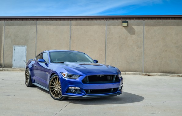 Picture mustang, wheels, ford, blue niche