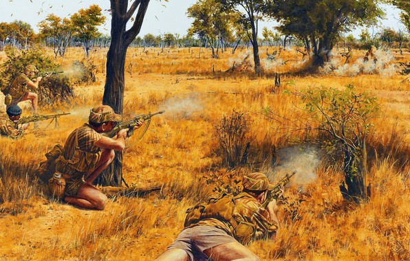 Picture ambush, shootout, southern Rhodesia, armed struggle, The war in southern Rhodesia