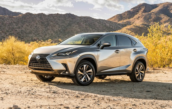 Picture 2018, crossover, 300h, Lexus NX