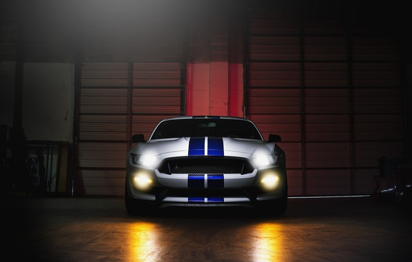 Picture Mustang, Ford, Shelby, GT500, Light, Front, White, Sight