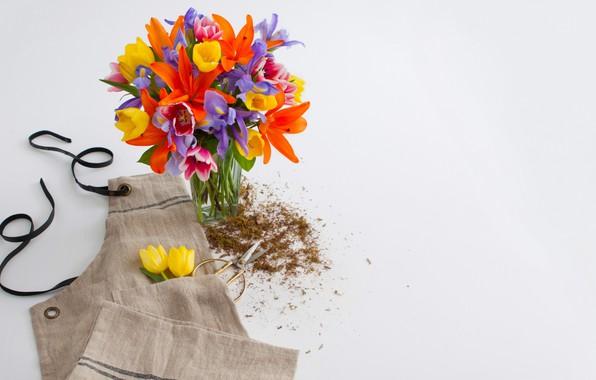 Picture flowers, bouquet, colors, vase, flowers, decor