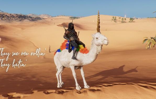 Picture funny, rollin, Assassin Creed Origins