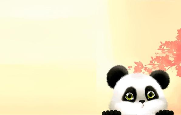 Picture art, bear, Panda, children's
