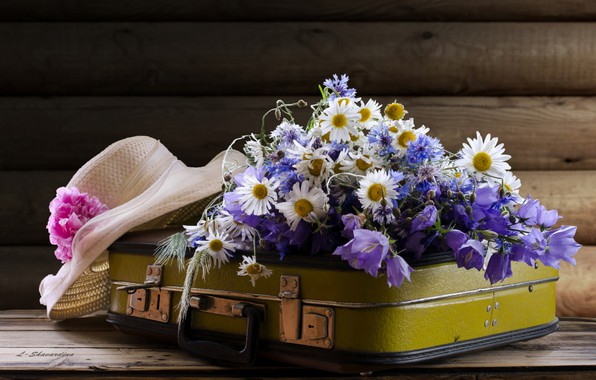 Photo wallpaper suitcase, hat, forget-me-nots, chamomile, bells