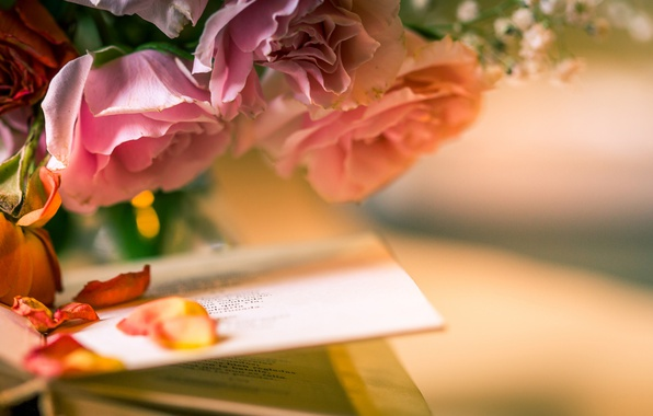 Picture flowers, style, roses, petals, book