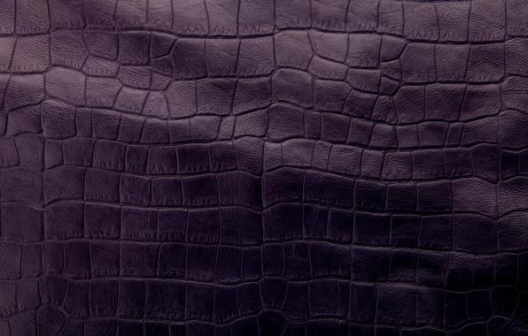 Picture leather, texture, leather, purple, crocodile skin
