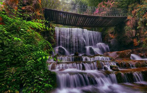 Picture nature, stones, waterfall, the bridge