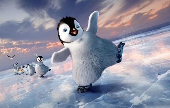 Picture ice, cartoon, penguins, Happy feet