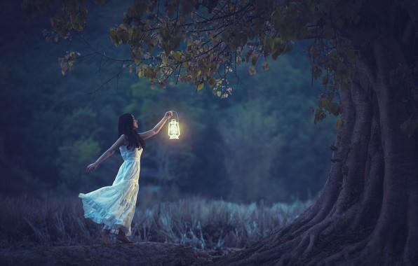 Picture girl, tree, mood, dress, lantern, Asian