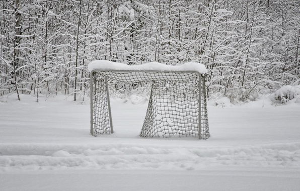 Picture winter, snow, gate