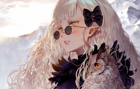 Picture Girl, long hair, anime, art, birds, glasses, artwork, owl, sweater, anime girl, hair ornament, pointy …