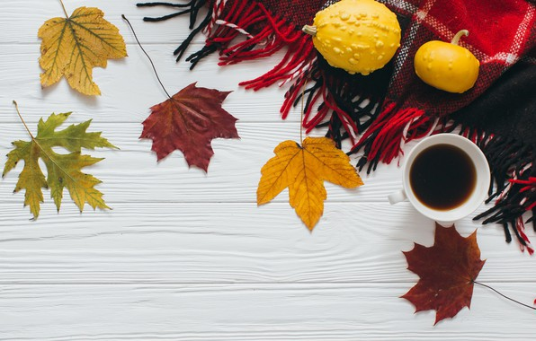 Picture autumn, leaves, coffee, scarf