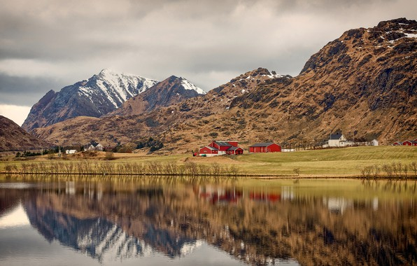 Picture clouds, trees, mountains, shore, Norway, Bay, houses, the bushes, The Lofoten Islands, Lofoten