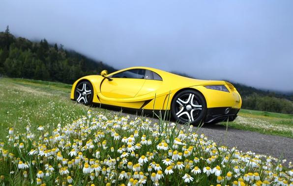 Picture chamomile, supercar, Spania, GTA Spano