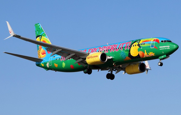 Photo wallpaper the sky, the sun, the plane, flies, passenger, Boeing 737-8K5