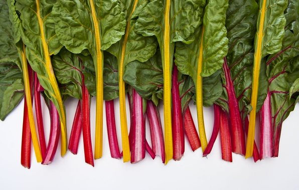 Picture background, Homegrown chard, veggie patch