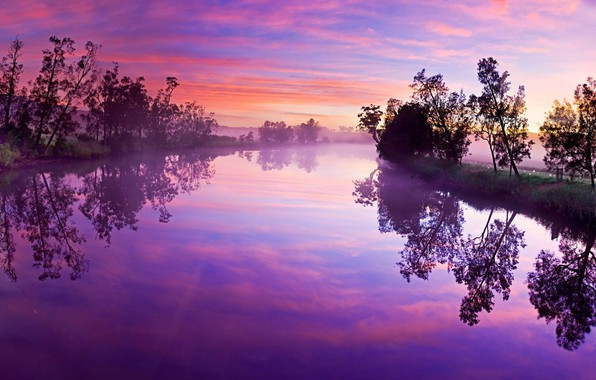 Picture Pink, Landscape, Lake, Forest, Trees