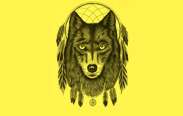 Picture wolf, minimalism, feathers, light background, wolf, Dreamcatcher, dreamcatcher, dream catcher