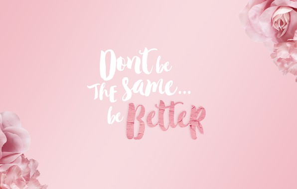 Picture flowers, style, the inscription, roses, pink background, the phrase, inspiration, motivation, be better, be better