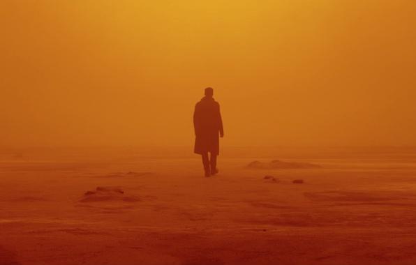 Picture cinema, movie, film, Ryan Gosling, Blade Runner, Blade Runner 2049, Blade Runner 2