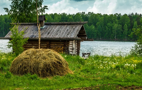 Picture greens, forest, summer, grass, trees, lake, house, shore, stack, hay, Russia, dandelions, hut, Lake Ladoga, …
