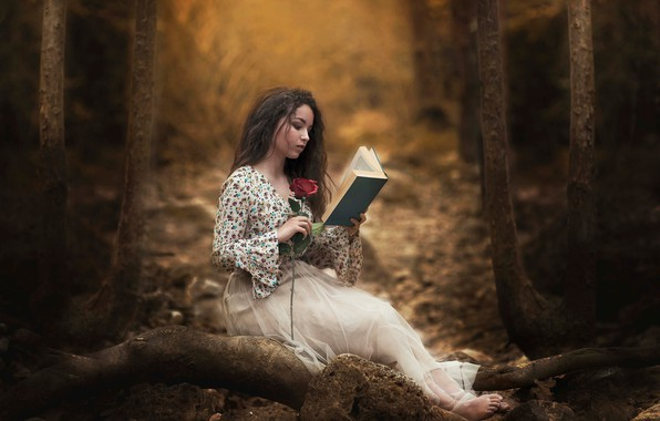 Picture forest, girl, rose, book, reading, Carmen Gabaldon