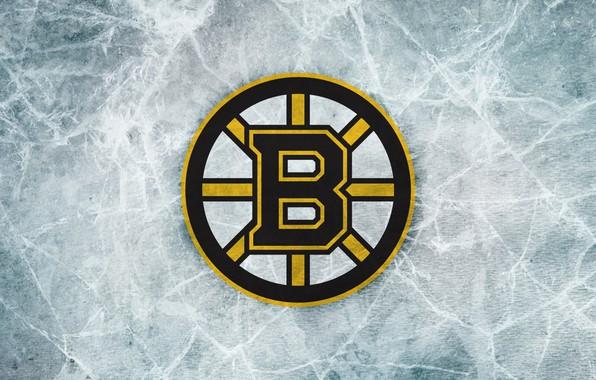 Picture sign, bear, Ice, emblem, Boston, Boston, NHL, NHL, Boston Bruins, The Boston Bruins, Brown bears