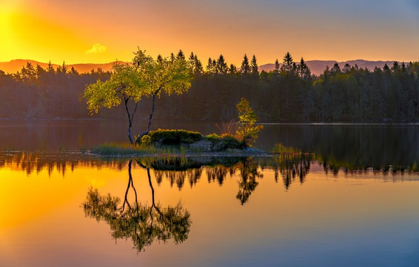 Picture lake, reflection, tree, Norway, island