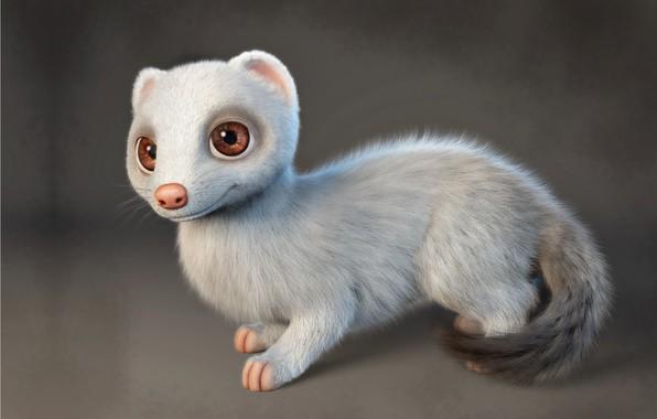 Picture art, ferret, Gabriela Salmeron, Ferret