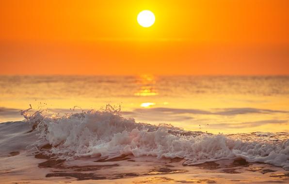 Picture sea, wave, beach, sunset, shore, beach, sea, ocean, sunset, seascape, sand, wave