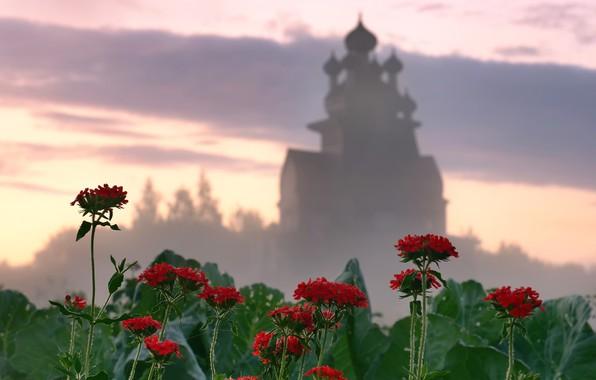 Picture flowers, temple, Arkhangelsk oblast, Podporozhye