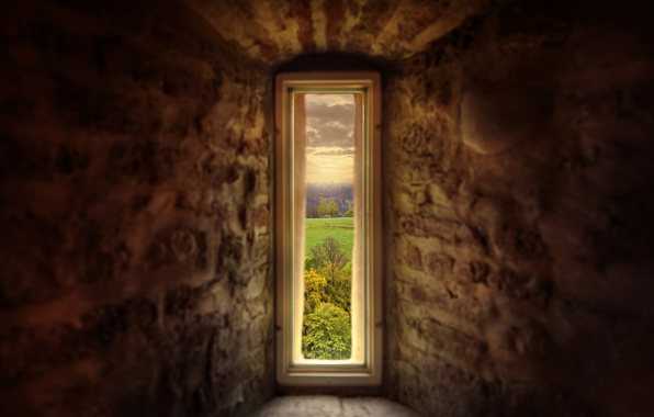 Picture nature, castle, wall, window