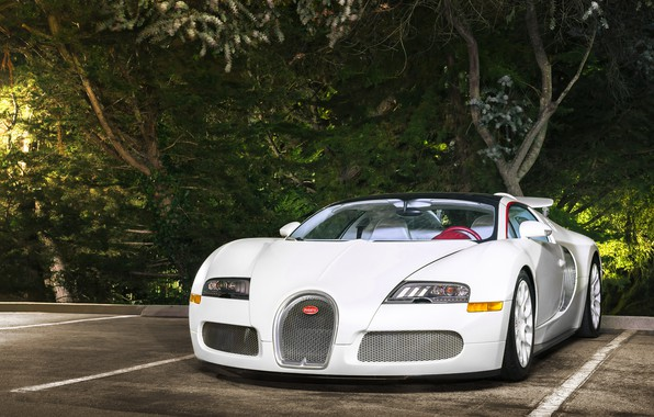 Picture Bugatti, Veyron, White, Vitesse, Wheels
