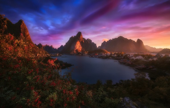 Picture light, mountains, rocks, the evening, morning, Norway, the village, the fjord, The Lofoten Islands