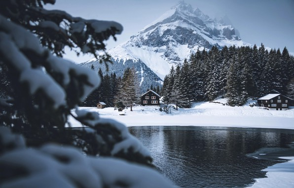 Picture winter, snow, mountains, river, tree, mountain, house
