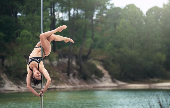 Picture girl, dance, grace, Diane, shestova acrobatics, Pole Sport