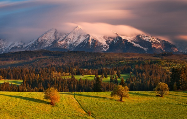 Picture autumn, clouds, light, mountains, forest