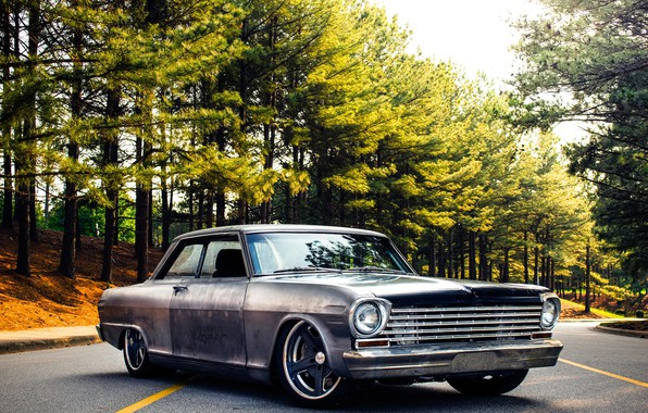 Picture Chevrolet, Nova, 1963, Wheels, Rodster, Forgeline