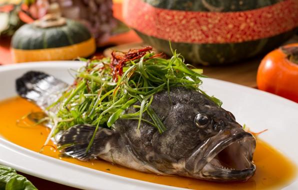 Picture algae, fish, sauce