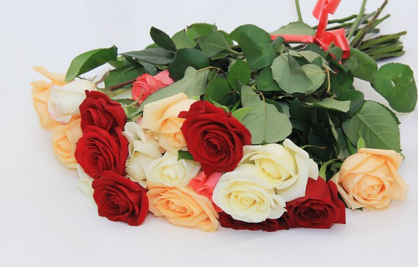 Picture background, roses, bouquet